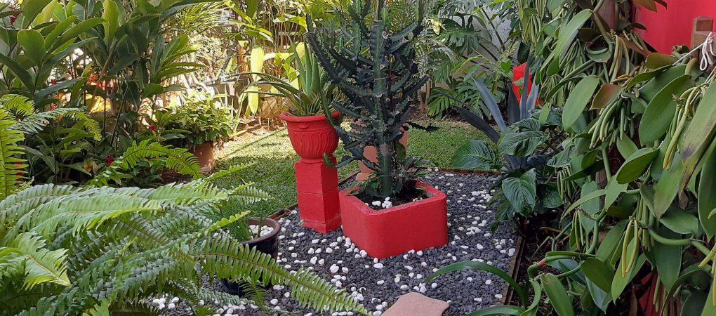 Le jardin réservé au gîte